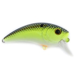 Sexified Chartreuse Shad