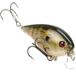 Strike King KVD 1.5 Shallow Runner